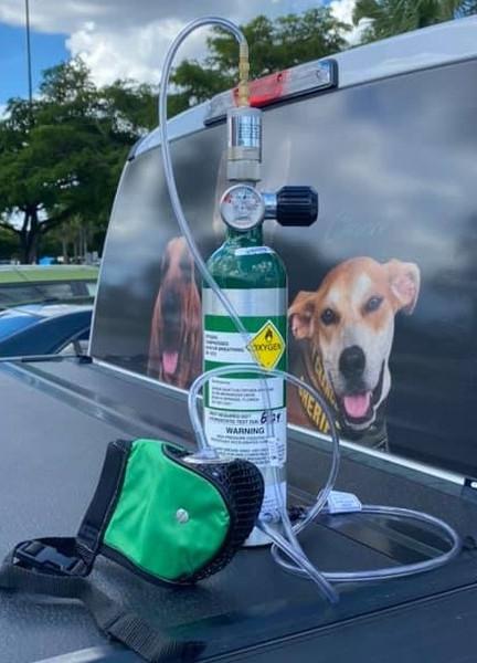 1A-D K902 Canine Portable Oxygen System