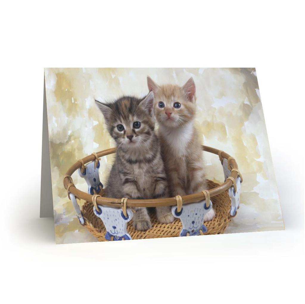 18L11Kitty Cats