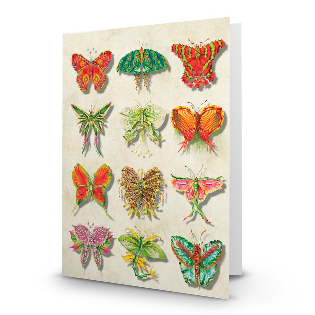 Flower Butterflies 02 - MT100