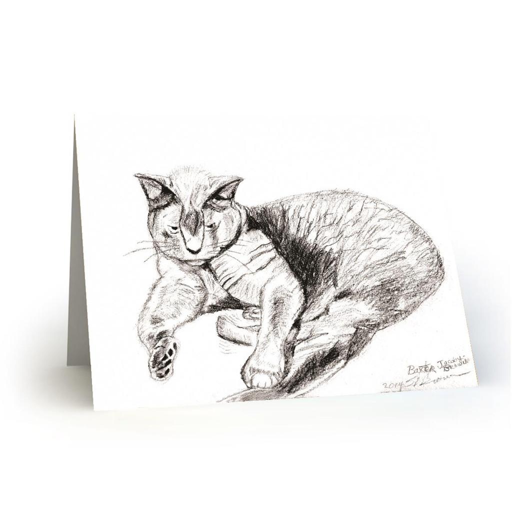 Baxter Cat - SB100