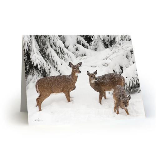 Deer 3 - HP100