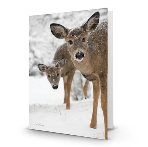 Deer 2 - HP100