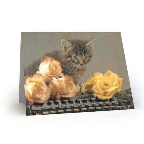19L32 Kitty Cats