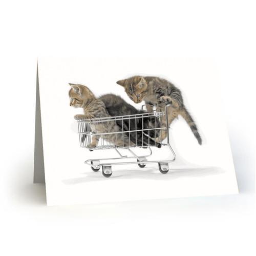 19L33 Kitty Cats