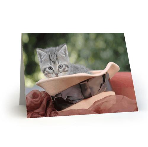 19L36 Kitty Cats