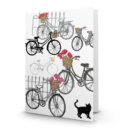 Bicycles - AP100