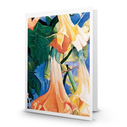 Antrum Flowers - JN100