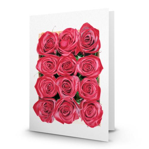 Twelve Roses 01 - MT100