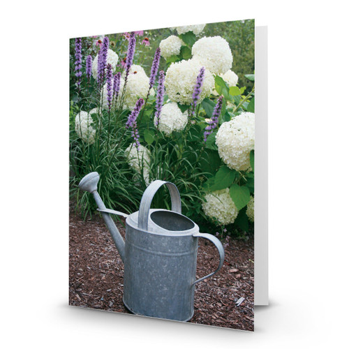 Garden Watering Can - CC100