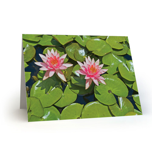 Pink Flowers with Lily Pad - CC100
