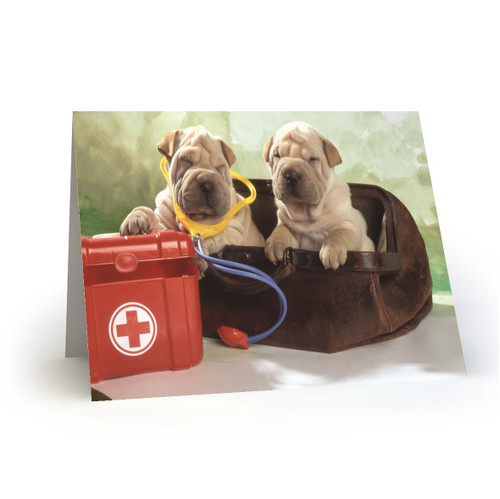 Doctor Doggies