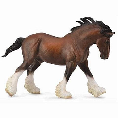 Clydesdale Stallion - Bay