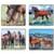 The Beauty of Horses Coasters
