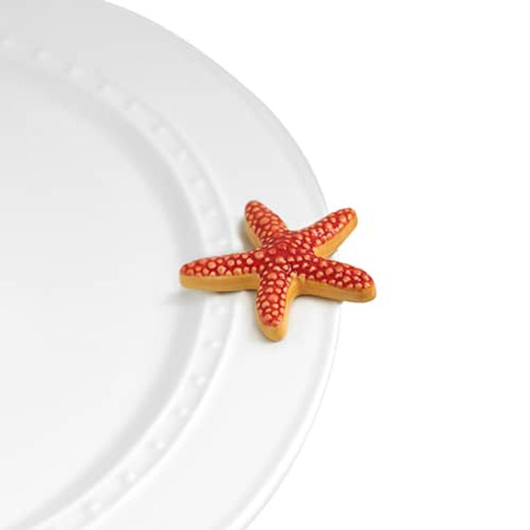 nf starfish