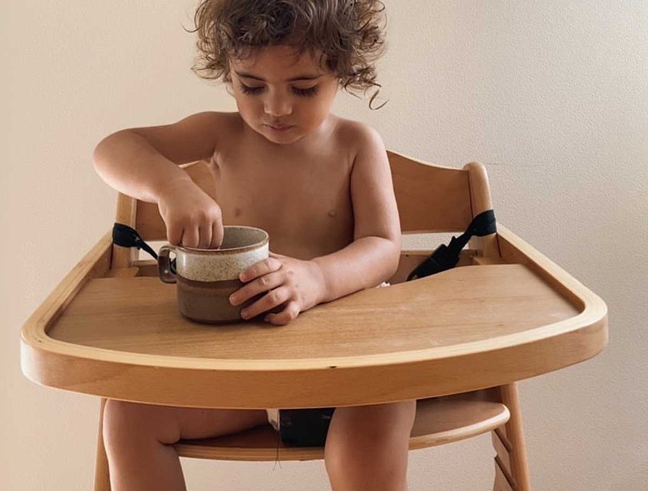 How to Choose the Best Highchair for your Child