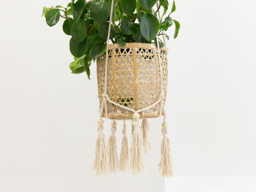 Eden Plant Hanger