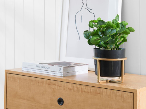 Pilea Artificial Plant
