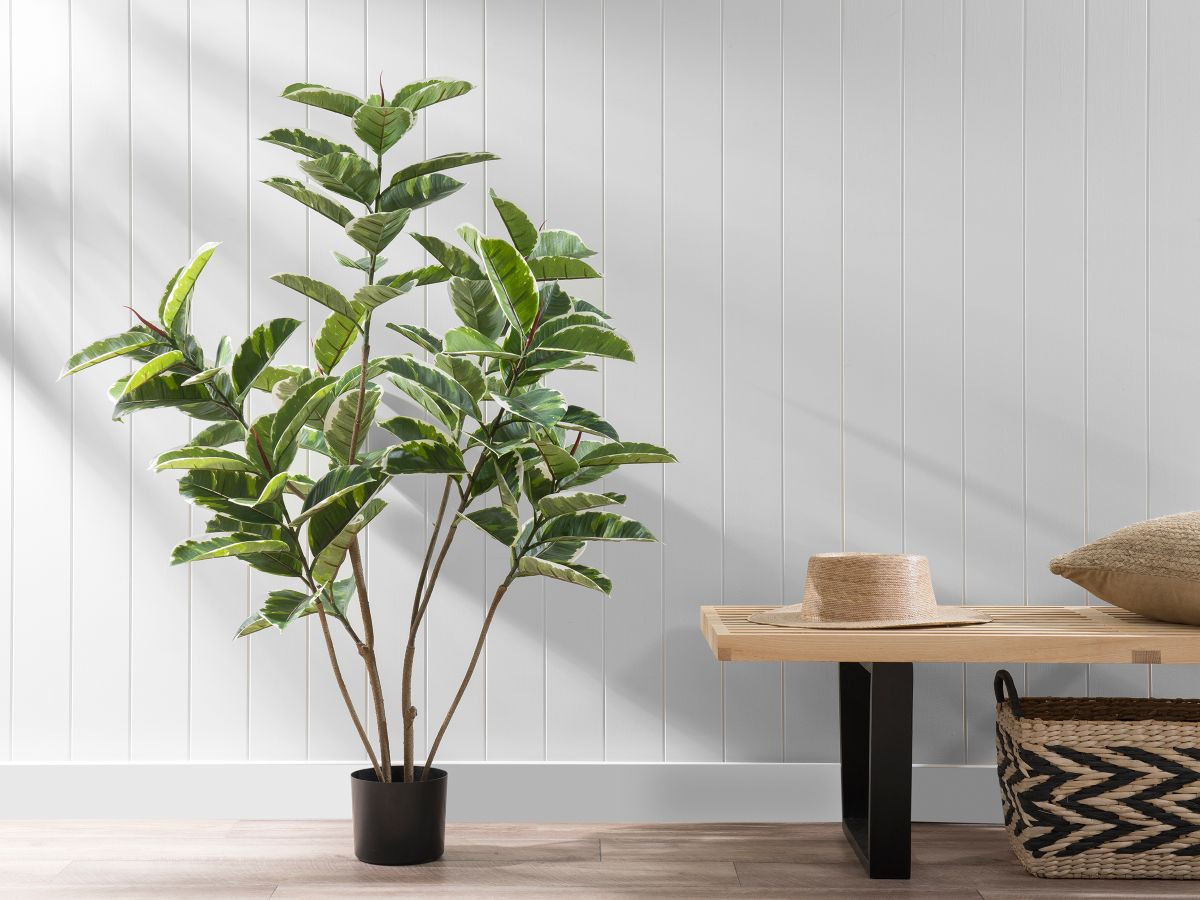 Rubber Fig Artificial Plant