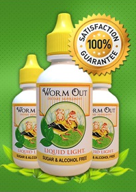 worm-out-3-bottles.png
