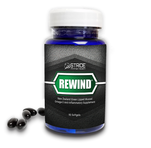 REWIND® CAPSULES (Human or Dog)