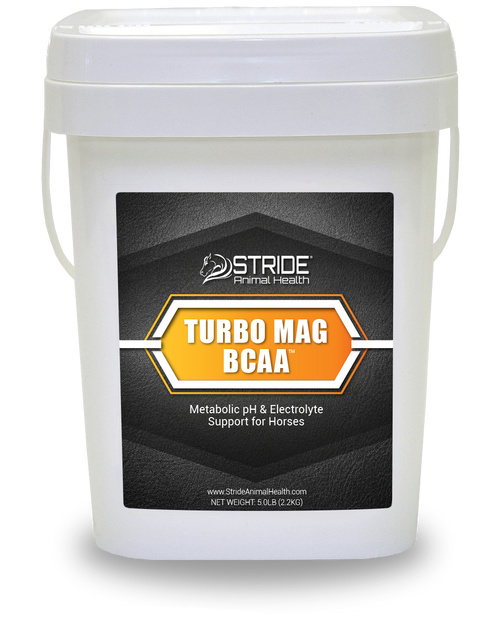 TURBO MAG BCAA