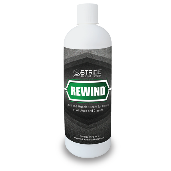Rewind Liniment for Horses