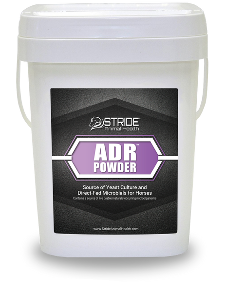 ADR Powder