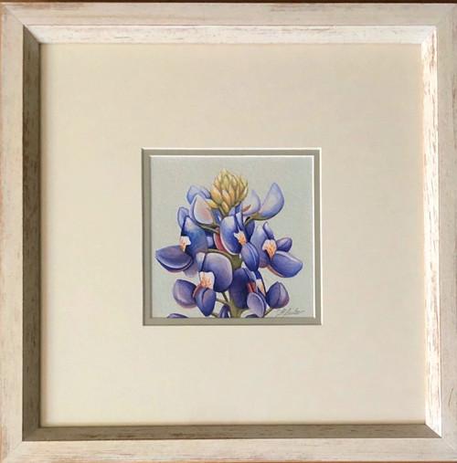 Floral Collection / Bluebonnet