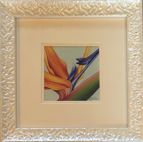 Floral Collection / Bird of Paradise - Giclee'