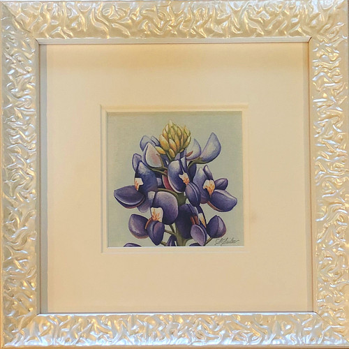 Floral Collection / Bluebonnet - Giclee'