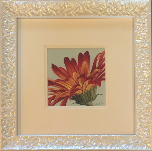 Floral Collection / Gerber Daisy - Giclee'