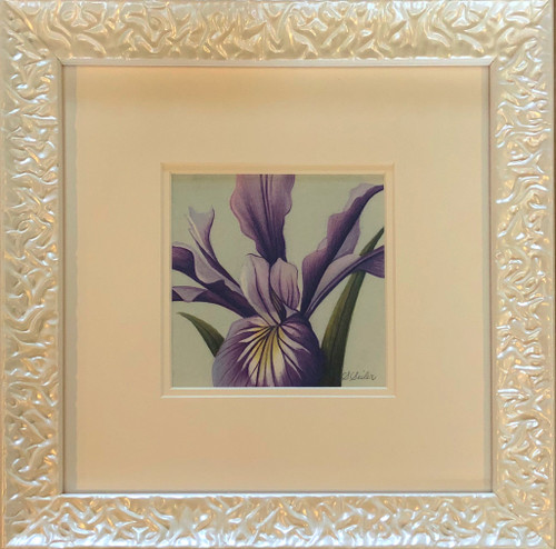 Floral Collection / Iris - Giclee'