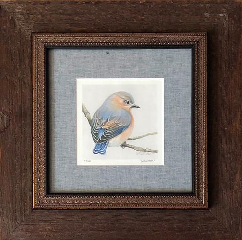Admiration Bird / Bluebird (wc) - Giclee' 32/100
