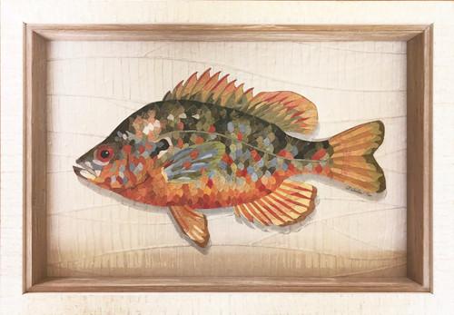 Sunfish - Giclee' 1/50