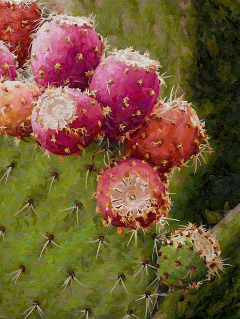 Desert Gems - Mosaic Giclee' AP