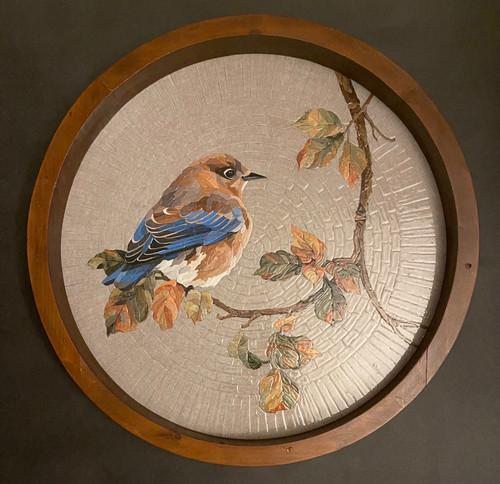 Autumn Eve / Female Eastern Bluebird - Giclee' #AP