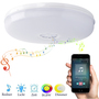 Wi-Fi Smart Ceiling Lamp RGB W W With Speaker
