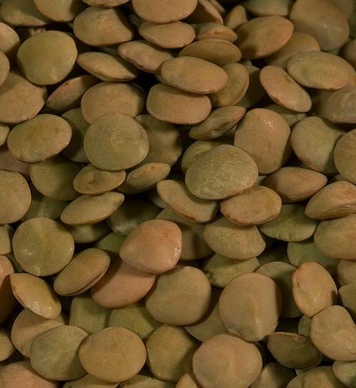 Shiloh Farms Organic Lentils, Brown