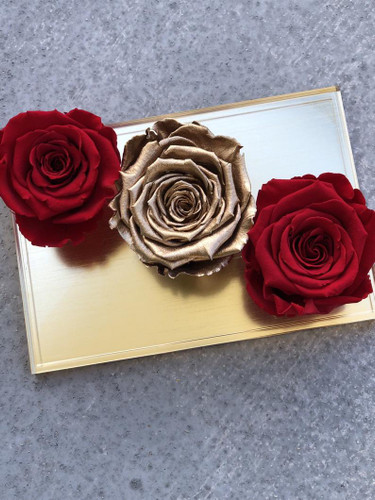 Premium Acrylic Box with Preserved Roses
