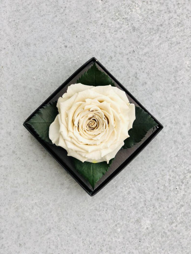 Gold / Silver Eternal Rose in an Acrylic Box