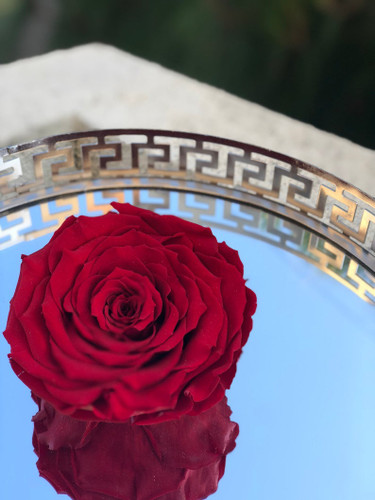 XXL Eternity Rose In a Glass Bowl