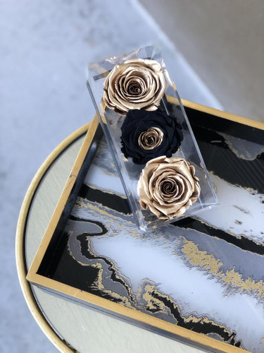 Preserved Roses in a Keepsake Acrylic Box