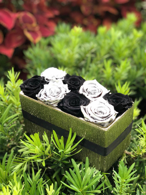 Different colors of preserved, eternity and luxury roses that last a year, in a box