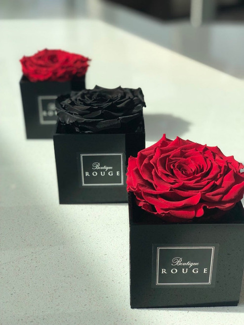Black Acrylic Box with an XXL Preserved Rose