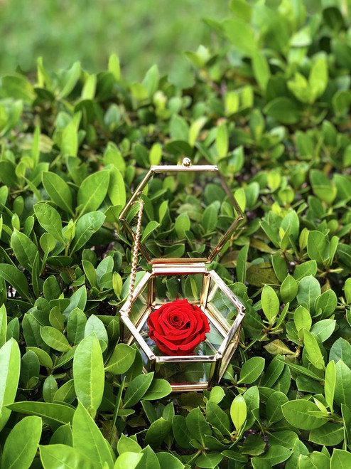 Hexagon Brass Keepsake Box with Eternity Roses