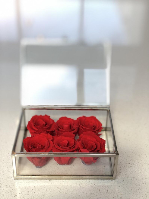 Silver Finish Glass Box with Preserved Roses