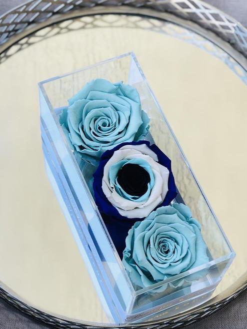 Evil Eye Roses