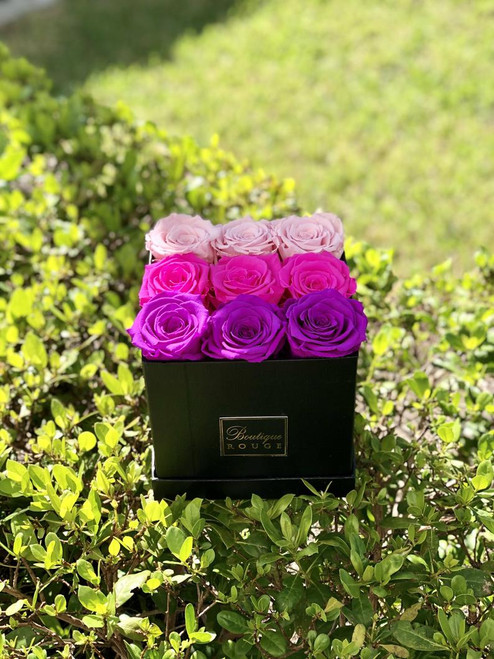 Pink Ombre Preserved Roses