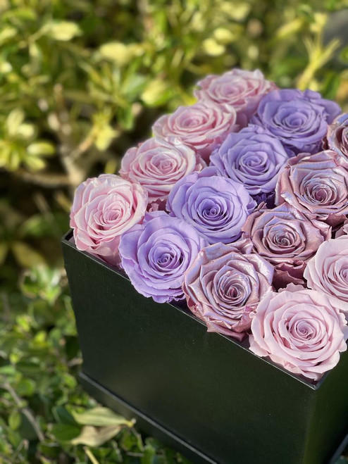 Pink Ombre Eternity Roses