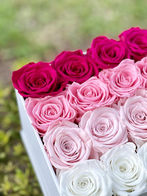 Pink Ombré Eternity Roses in a White Box